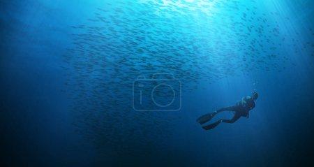 Photo pour Silhouette homme plongeur avec troupeau de poissons. Activités sportives et récréatives sous-marines . - image libre de droit