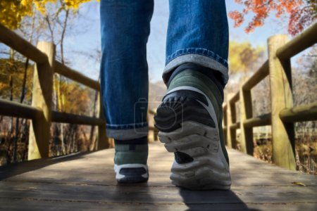 Travel in Fall and Autumn Concept. Low Section of Young Traveler Walking on Wooden Trail in the Woods. Ant Eyes View Shot