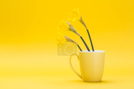 Photo for The easter installation with a cup and flowers - Royalty Free Image