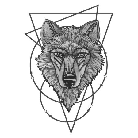 Illustration for Vector illustration of a howling wolf, engraving. Print for T-shirts eps10 - Royalty Free Image