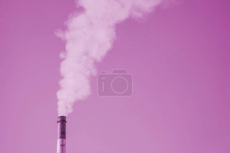 Tower of CHPP in monochrome close-up. Steam from striped pipe of CHP on sky. Industrial background of TPP in pink tones. Thermal power plant produce steam for electric power. Environmental pollution.