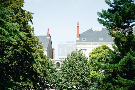 Photo for Roofs of french traditional buildings hidden by trees, French atmosphere concept - Royalty Free Image