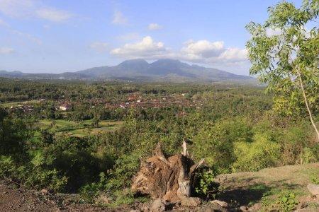 Photo for Nature landscape in Ubud, Indonesia - Royalty Free Image