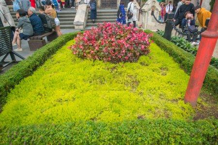 Photo for Tourists looking at Sunworld Ba Na Hills Park in Vietnam, Da Nang - Royalty Free Image