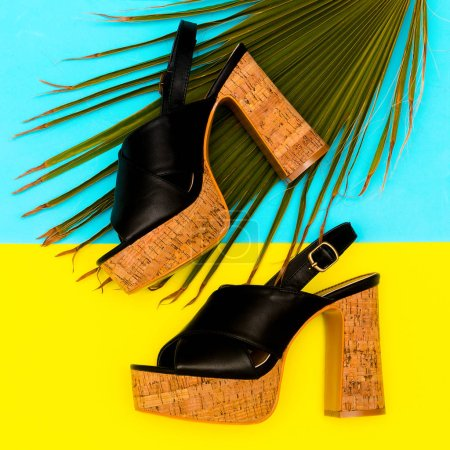 Shoes heel  for Lady. Summer look. Stylish Sandals