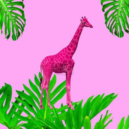 Foto de Arte collage contemporáneo mínimo. Jirafa y las plantas de moda en concepto rosa - Imagen libre de derechos