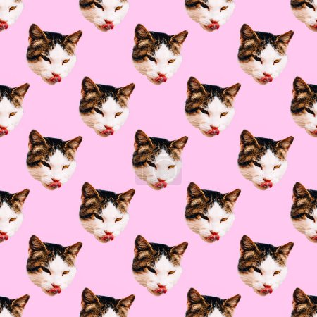 Photo for Seamless pattern. Kitty face - Royalty Free Image