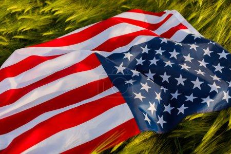 Photo pour Femme tenant le drapeau américain dans un champ de blé. Patriotes d'Amérique. Fille célébrant le 4 juillet . - image libre de droit