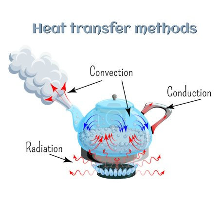 Heat transfer methods on example of water boiling ...