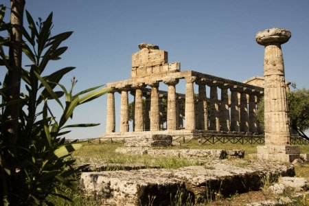 The ancient ruins of Paestum Italy remains of religious buildings of the ancient Greek domination
