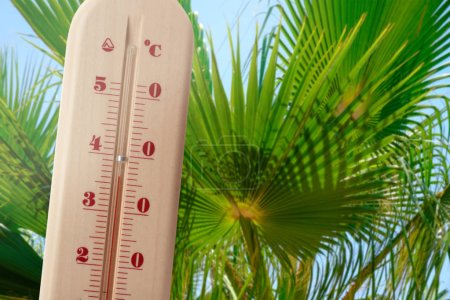 Thermometer showing high temperature and sky with palm leaves on background. Hot summer weather