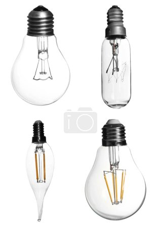 Set with different light bulbs for lamps on white background