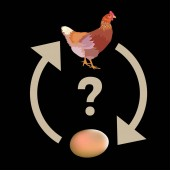 Causality dilemma Which came first: the chicken or the egg? Vector illustration isolated on black background