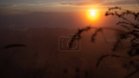 Photo for Beautiful landscape with tall grass in the sunlight at volcano Batur, Bali, Indonesia - Royalty Free Image