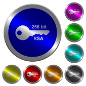 256 bit rsa encryption luminous coin-like round color buttons