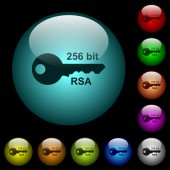 256 bit rsa encryption icons in color illuminated glass buttons