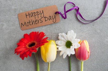 Photo pour Fête des mères fleurs de printemps assorties - image libre de droit