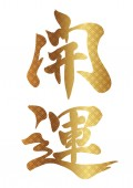 Japanese Kanji brush calligraphy Kaiun decorated with traditional patterns vector illustration Text translation: better fortune