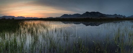 Panoramic view of a wetland near the town of worcester in the western cape