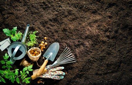 Photo pour Outils de jardinage et semis sur terre. Printemps dans le jardin - image libre de droit