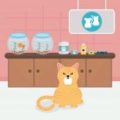 cute little cat in veterinary