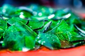 pile of pieces of broken green bottle glass close up