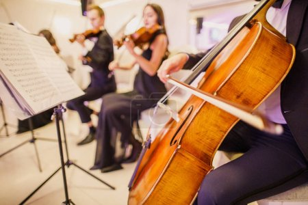 Photo for Beautiful classical instrument cello - Royalty Free Image
