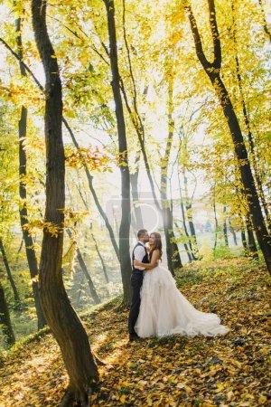 Photo pour Heureux mariage couple posant - image libre de droit