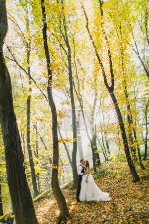 Photo pour Couple de mariage dans le parc d'automne - image libre de droit