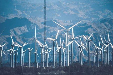Foto de Central eólica de California. Valle de Coachella, Estados Unidos. Tema Energías Renovables . - Imagen libre de derechos