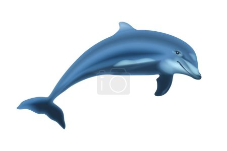 Photo pour Jumping Dolphin Isolated on Solid White Background. - image libre de droit