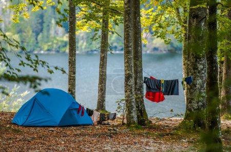 Photo pour Camping de tente en pleine nature. Tente moderne bleue et vêtements de séchage sur une corde entre les arbres forestiers. Camping en plein air au bord du lac . - image libre de droit