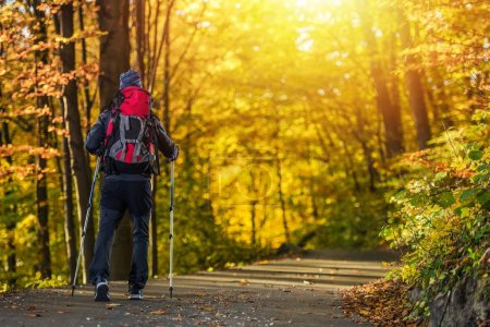 Foto de Fall Time Forest Trekking. Tema de recreación al aire libre. Hombres caucásicos con mochila y bastones de senderismo . - Imagen libre de derechos