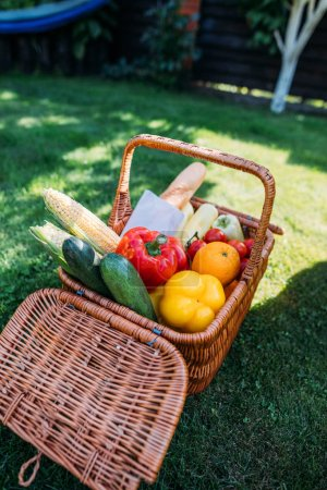 close up view of basket with baget and vegetables for picnic on green grass
