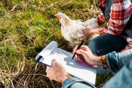 partial view of female farmer holding chicken while her boyfriend making notes in clipboard outdoors