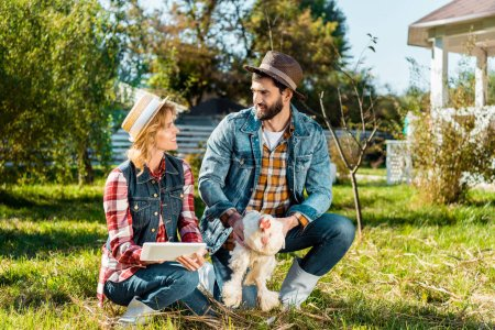 smiling male farmer holding chicken while his girlfriend using digital tablet near at farm