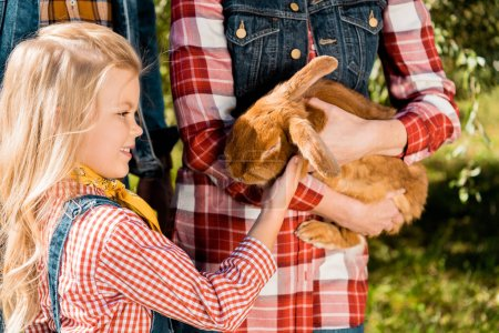 little kid touching brown bunny in hands of her mother outdoors