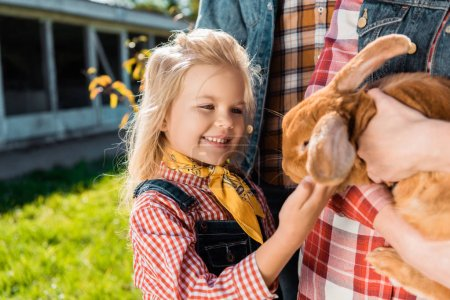 partial view of little kid touching brown bunny in hands of her mother outdoors