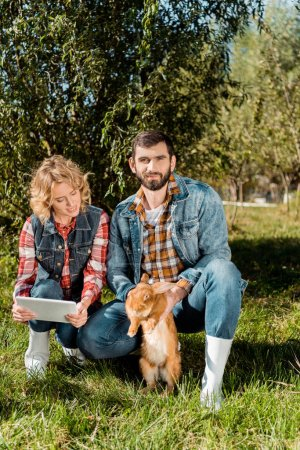 smiling male farmer holding brown rabbit while his girlfriend using digital tablet on grass at ranch