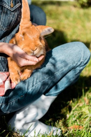 cropped image of woman holding adorable brown rabbit outdoors