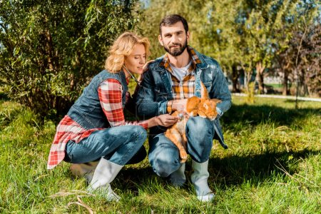 handsome male farmer holding rabbit while his girlfriend listening rabbit by stethoscope at farm