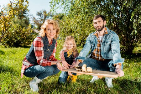 farmer family with daughter holding wooden board with adorable baby chicks outdoors