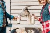 """Постер, картина, фотообои """"обрезанное изображение фермеров, показаны бутылки молока во время коз, стоя возле деревянный забор на ранчо"""""""