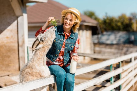 selective focus of female farmer with milk bottle sitting on wooden fence and feeding goat at ranch