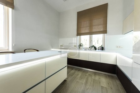 interior view of stylish kitchen in light colors