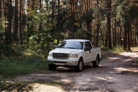 Photo pour Voiture blanche sur le sentier dans la forêt de pins d'automne - image libre de droit