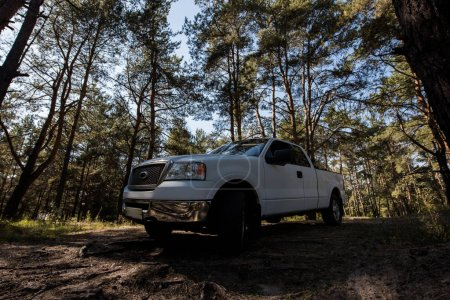 Photo for White pickup truck in forest, surface level - Royalty Free Image