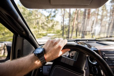 Photo for Cropped view of man with watch driving car in forest - Royalty Free Image