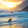 Horseriding at ocean beach on sunset background. C...
