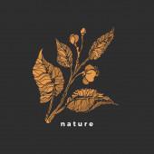 Tea sprout Vector symbol Sketch bush leaf flower